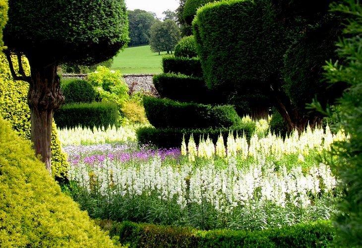 красивые сады фото