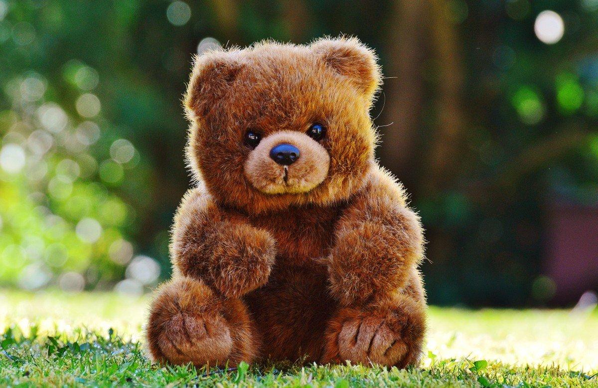 яркие картинки медвежат