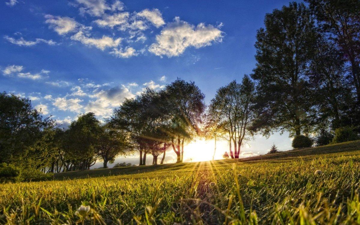 Картинки солнечной погоды летом, картинки бывают день