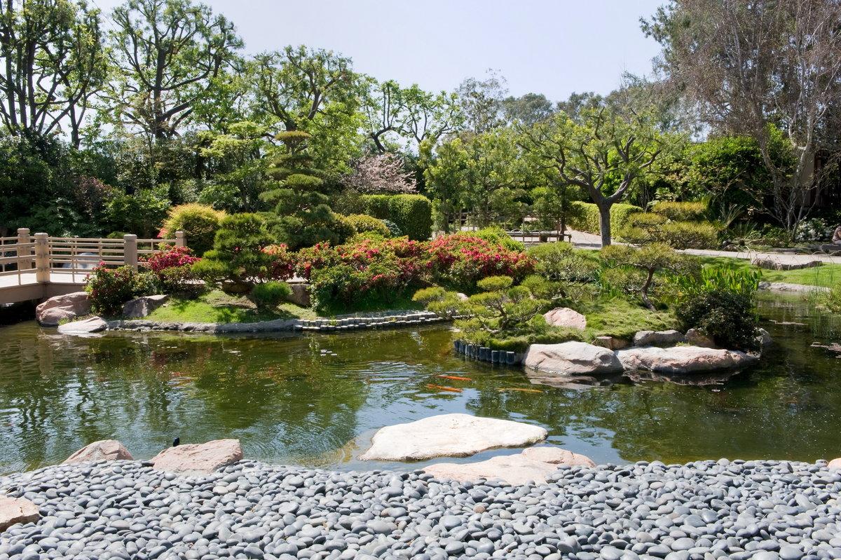 ландшафтный дизайн с озером фото продолжение рода