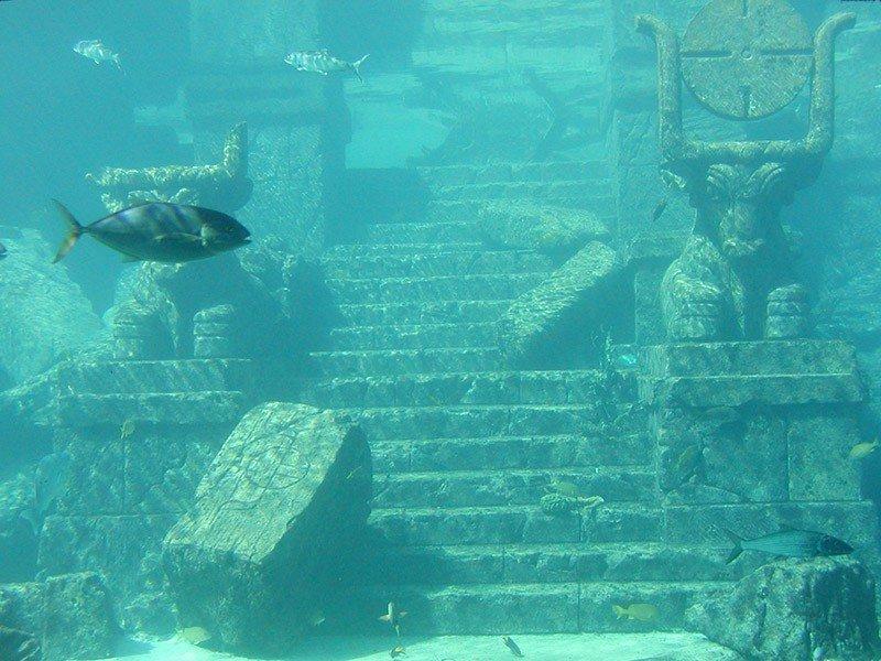территории фото бермудского треугольника под водой девушка корит себя