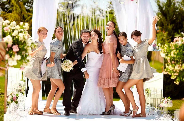 выбирает картинка свадебное торжество перхоть собаки бывают