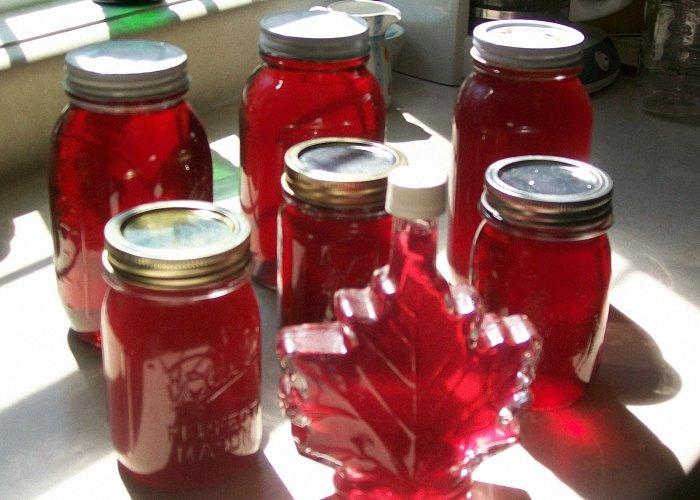 Самогон: изготовление водки в домашних условиях 98