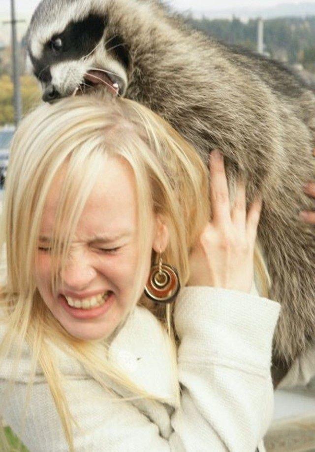 Красивой, прикольные картинки девушка с животным