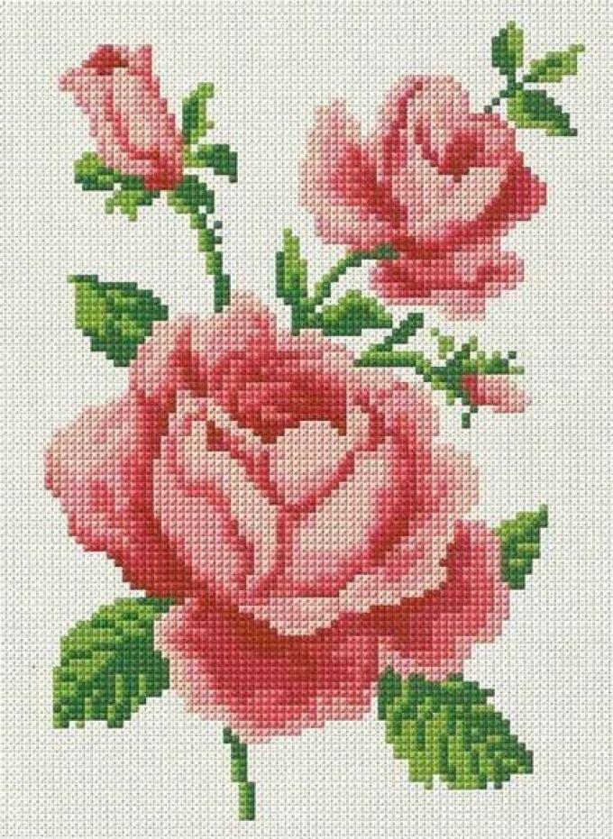 Вышивка крестом схемы бесплатно розы 447
