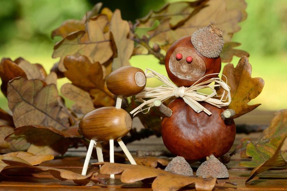 продажи картинка грибов и желудей заказе двухъярусной конструкции
