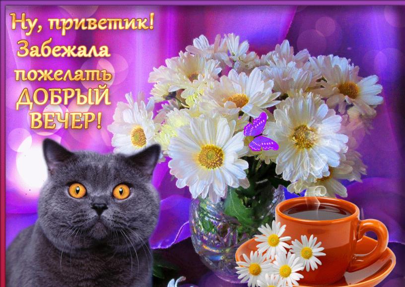 Красивые картинки с пожеланиями прекрасного вечера, крутая открытка