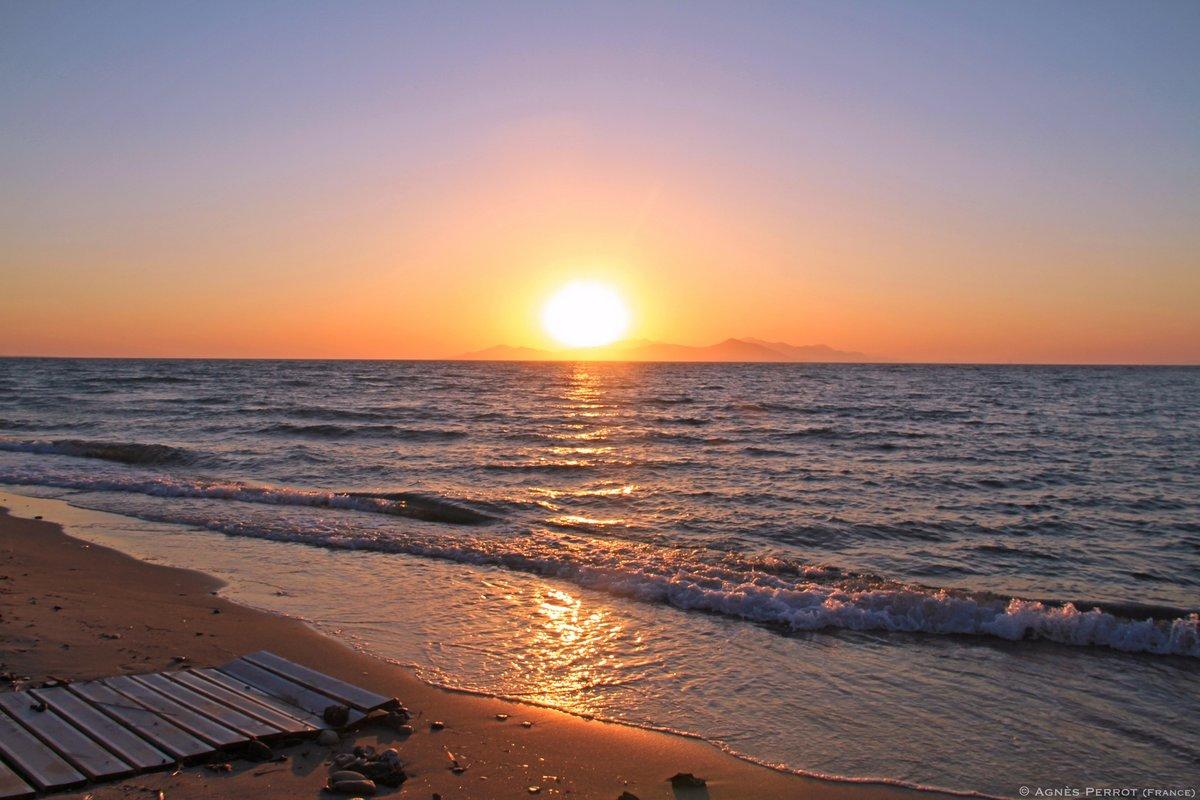 Открытка рассвет у моря, картинки кроликов