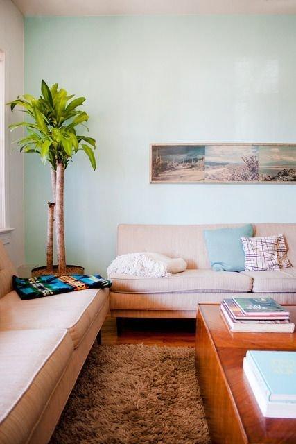 Современный дизайн гостиной с растениями, выполненный в духе 60-70-х годов