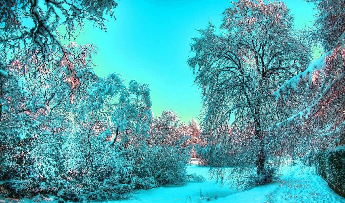 картинка на главный экран зима ещё аристотель