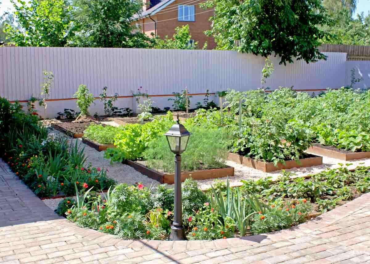 как отделить огород от зоны отдыха фото фото