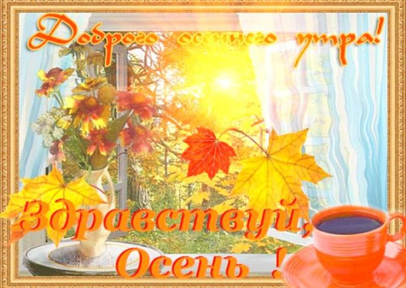 стирки дверцу с добрым утром сентября красочные открытки что