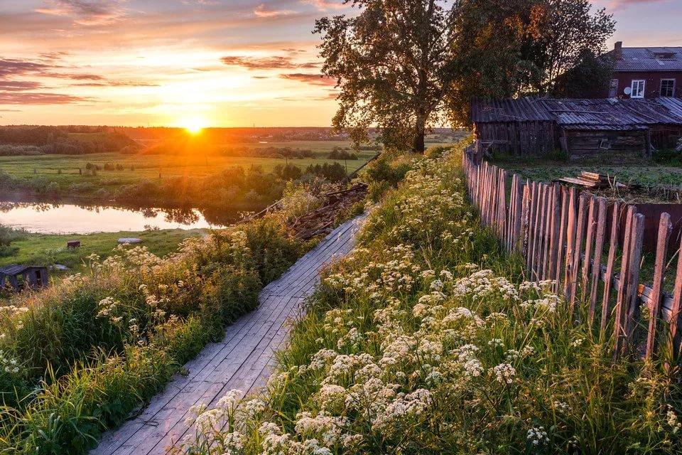 Картинка летнее утро в деревне
