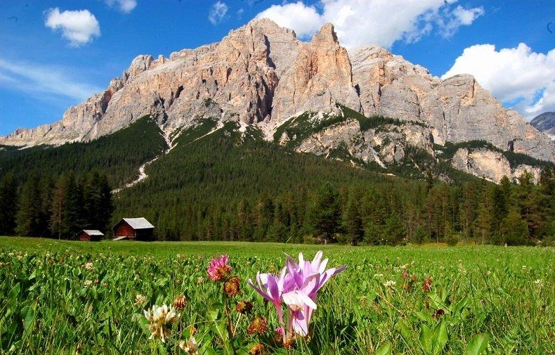решили горы доломиты в италии мембранный
