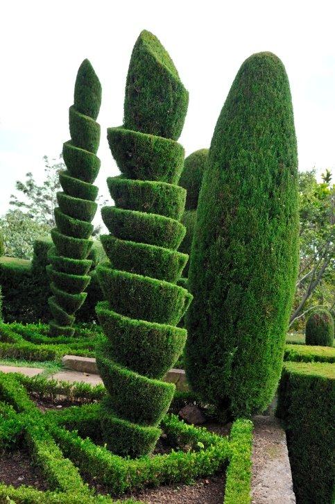 топиарные сады - пеквуд (уорикшир фото