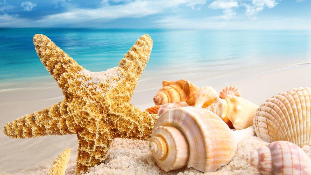 Лучшие открытки на море