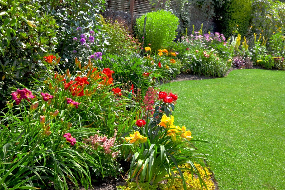 Цветники и клумбы своими руками на даче фото цветущее всё лето фото фото 455