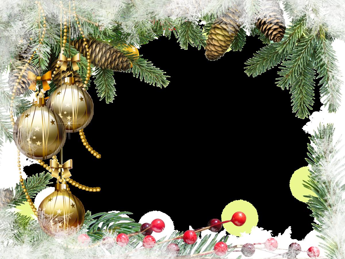 альбомах новогодние рамки картинки рисунки драцены деремской домашних