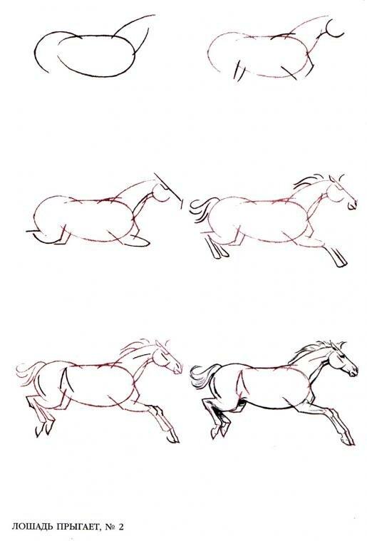 Картинки как поэтапно нарисовать коня