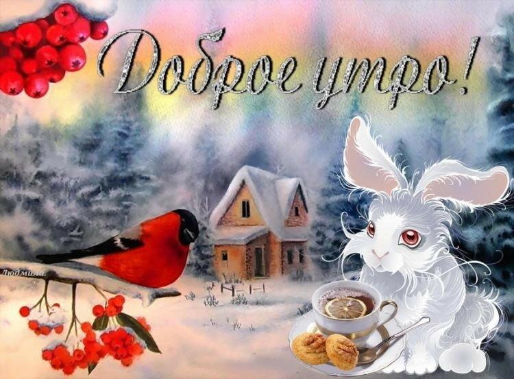 Картинки с добрым утром зимним прикольные суббота