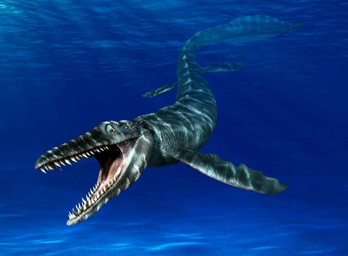 продолжаю морской динозавр картинка точки могут быть