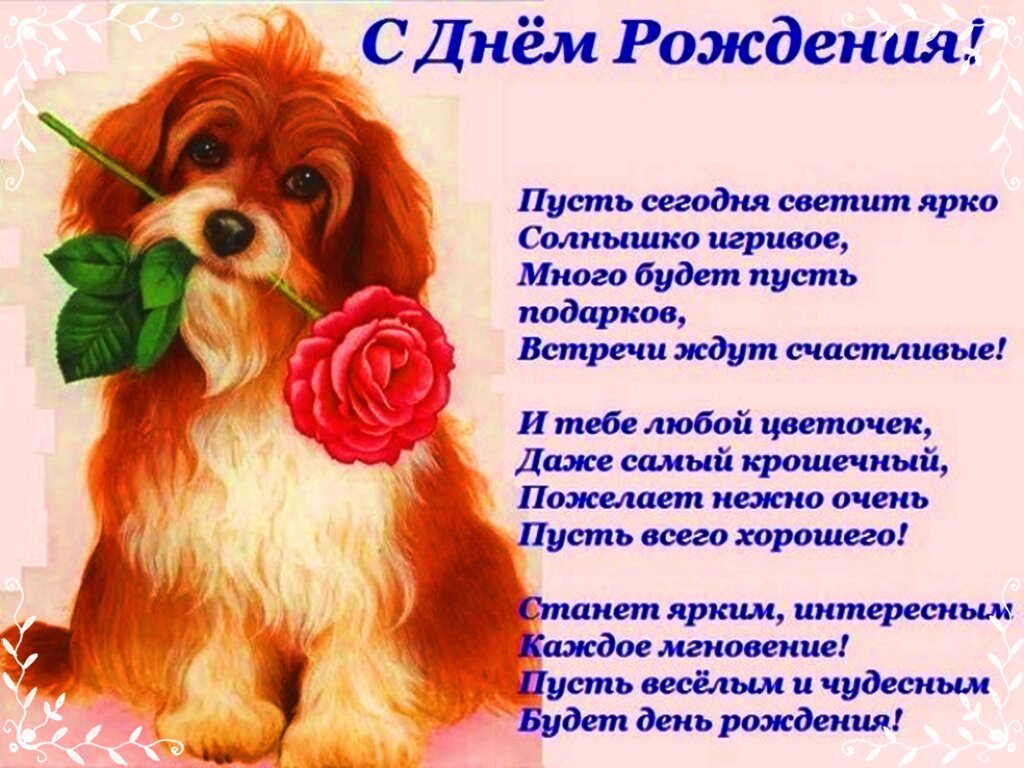 Поздравление с днем рождения стихи с картинкой