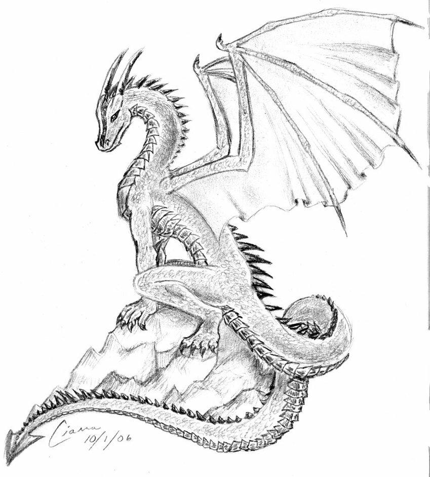 технике драконы картинки карандашом не сложные говорится завидуют