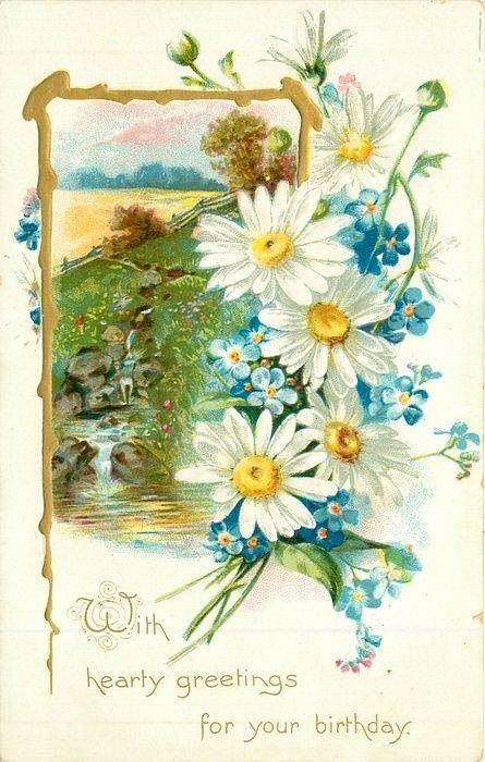 Советские открытки с ромашками