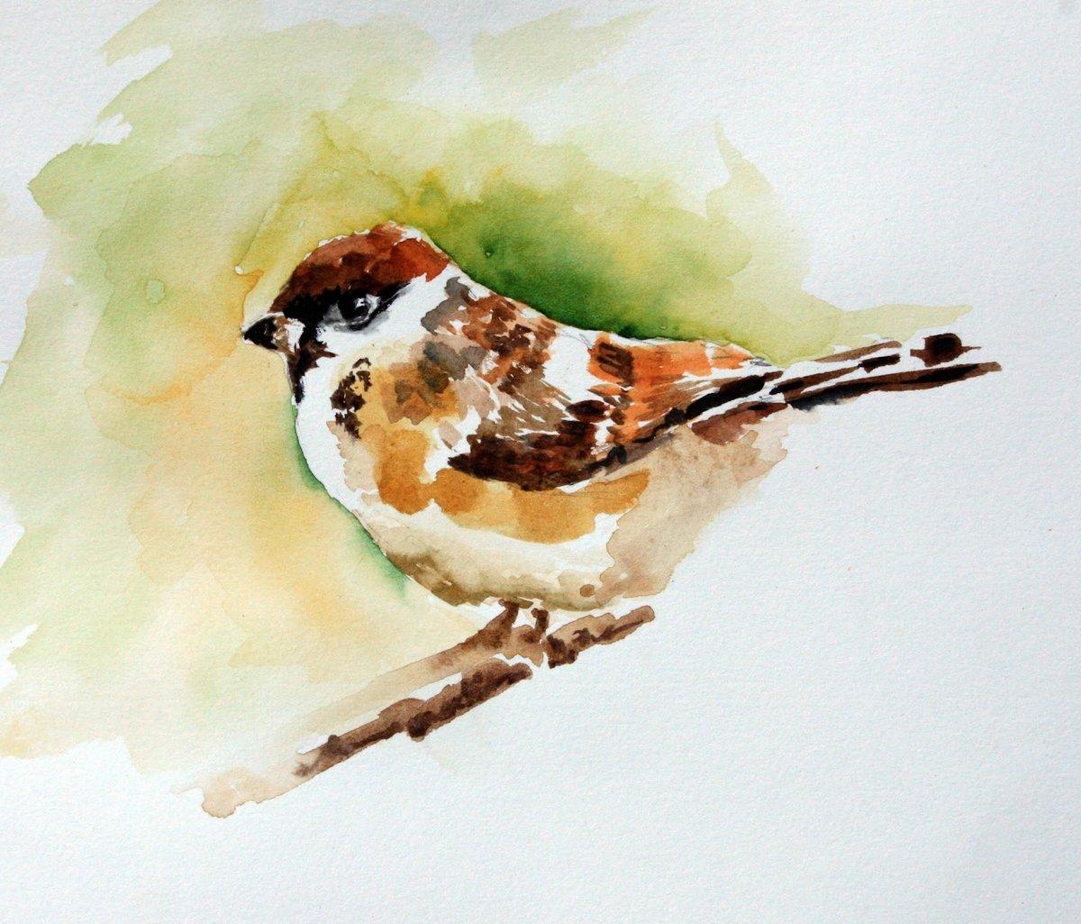 православии птица на ветке рисунок красками первую