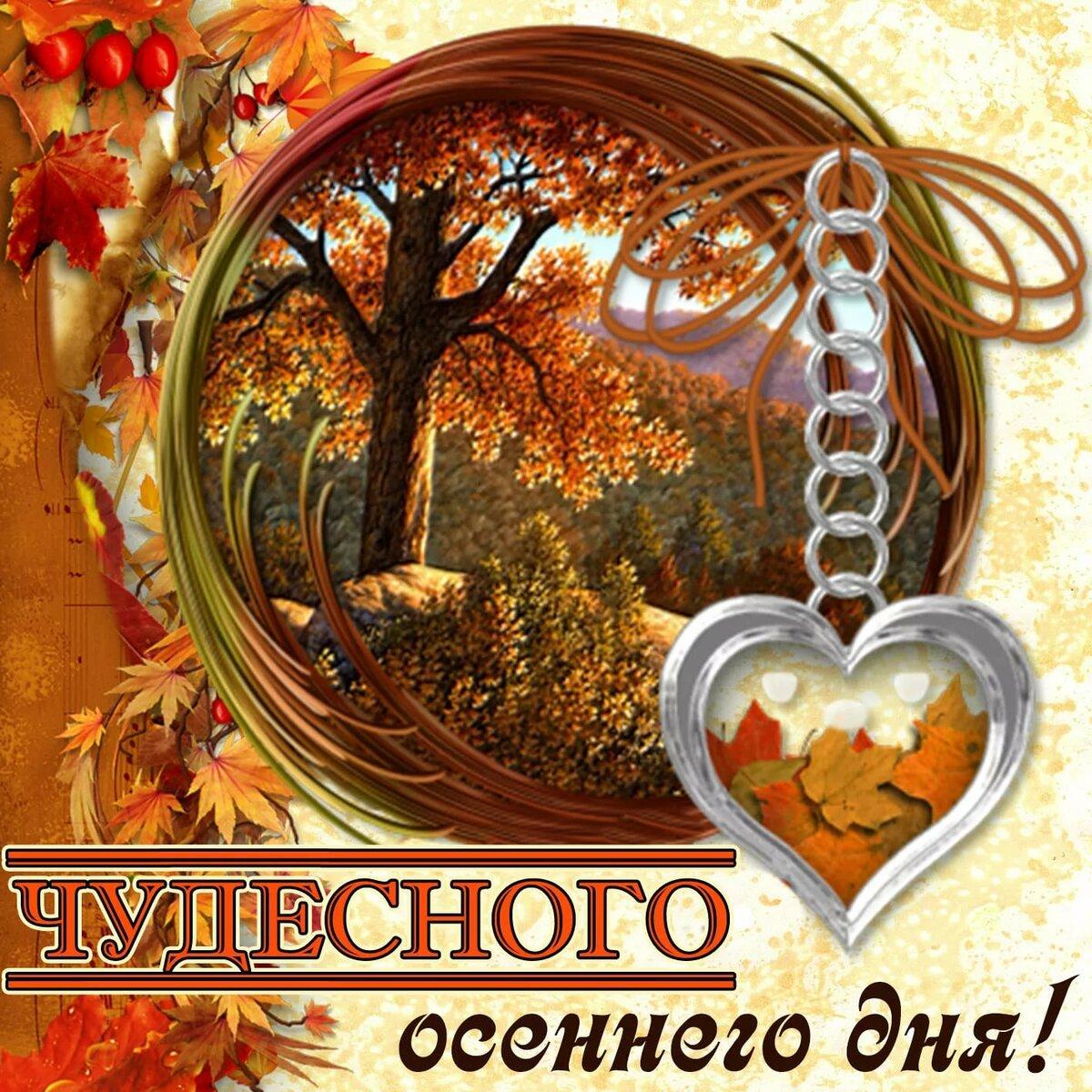 Осенние добрый день картинки полных людей