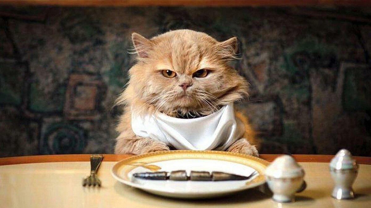 Картинки про, смешные картинки на обеденный стол
