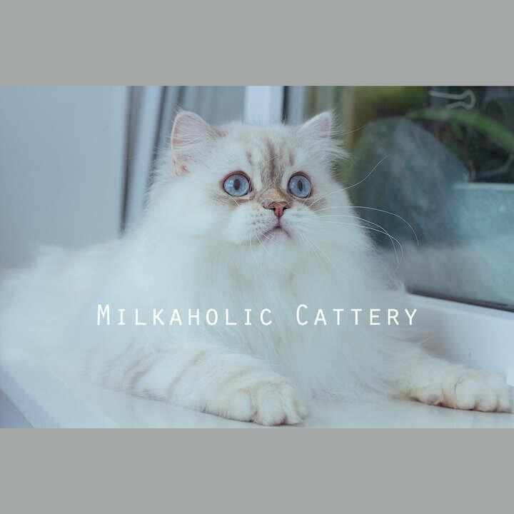 Milkaholic datovania