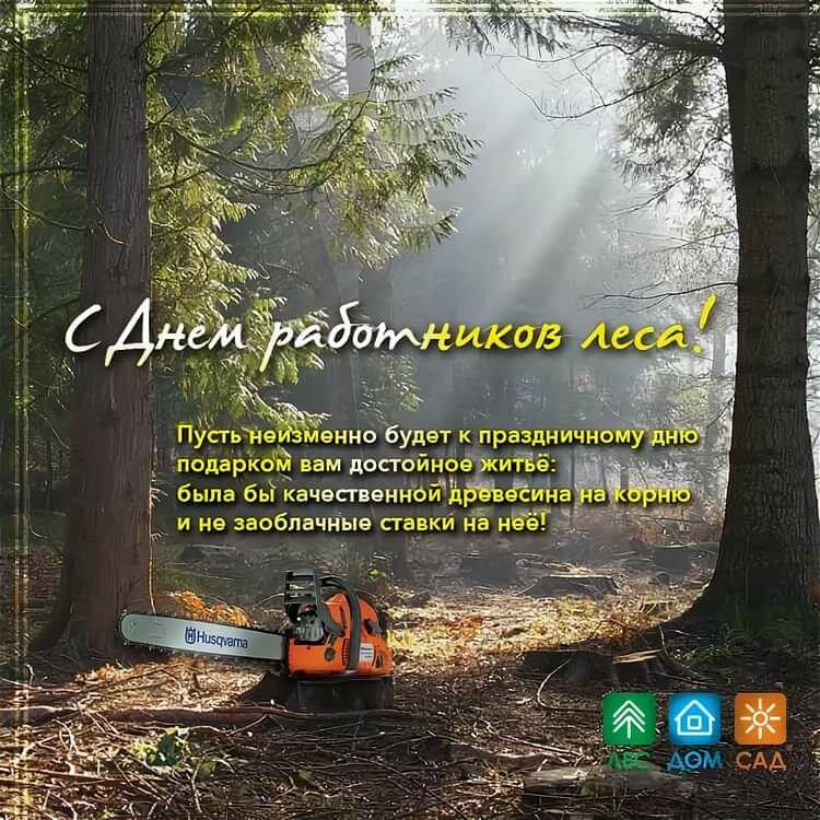 Поздравление к дню работника леса коллегам