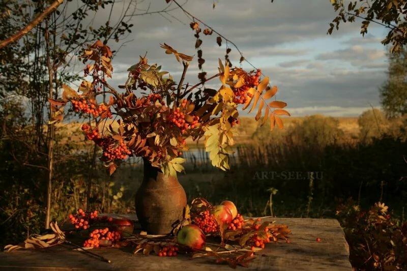 Открытки природа осень осенний натюрморт, люблю