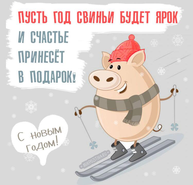 Прикольные открытка с новым годом свиньи, тему театр