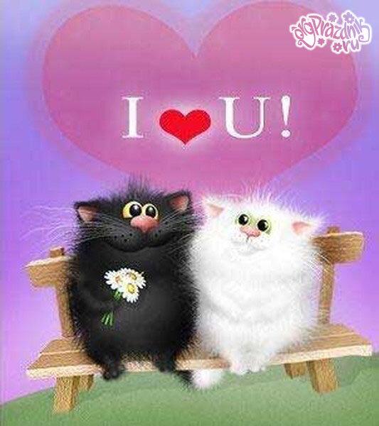 Днем, открытка к дню святого валентина с кошками