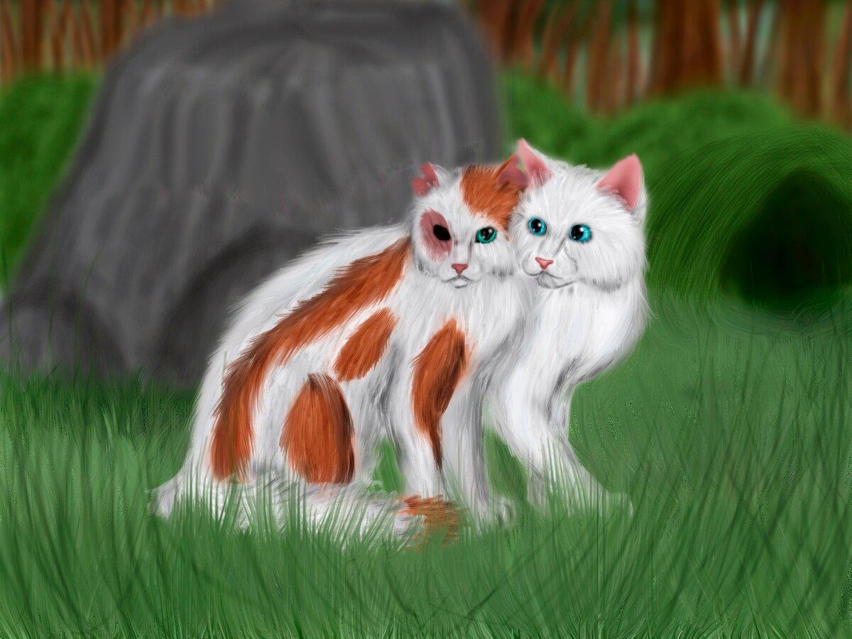 Белохвост картинки коты воители
