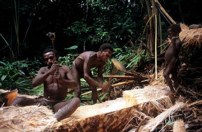 самом фото мужчина племени каравай так удивило