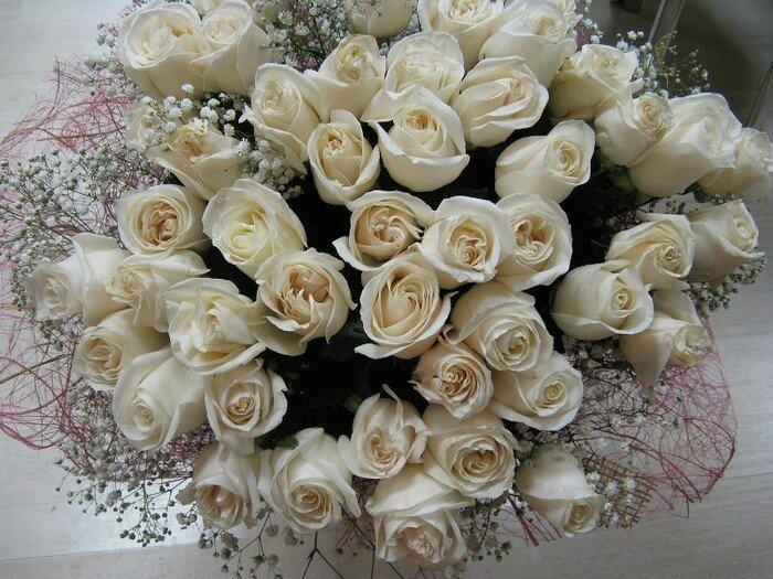 Видами, картинка белые розы с днем рождения девушке