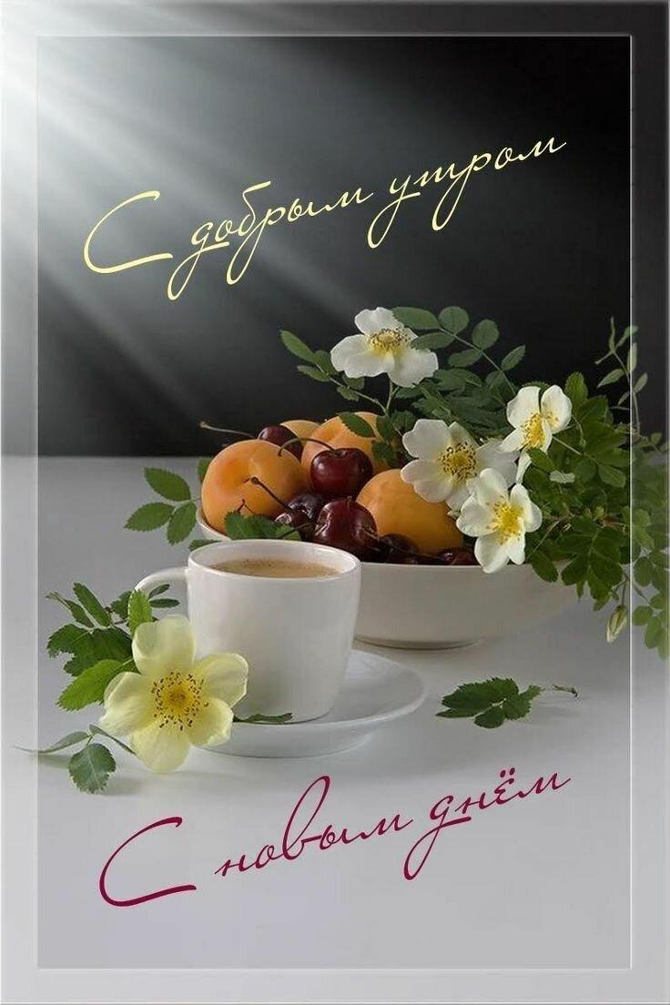 Открытки и фотографии пожелания доброго утра ночи и дня