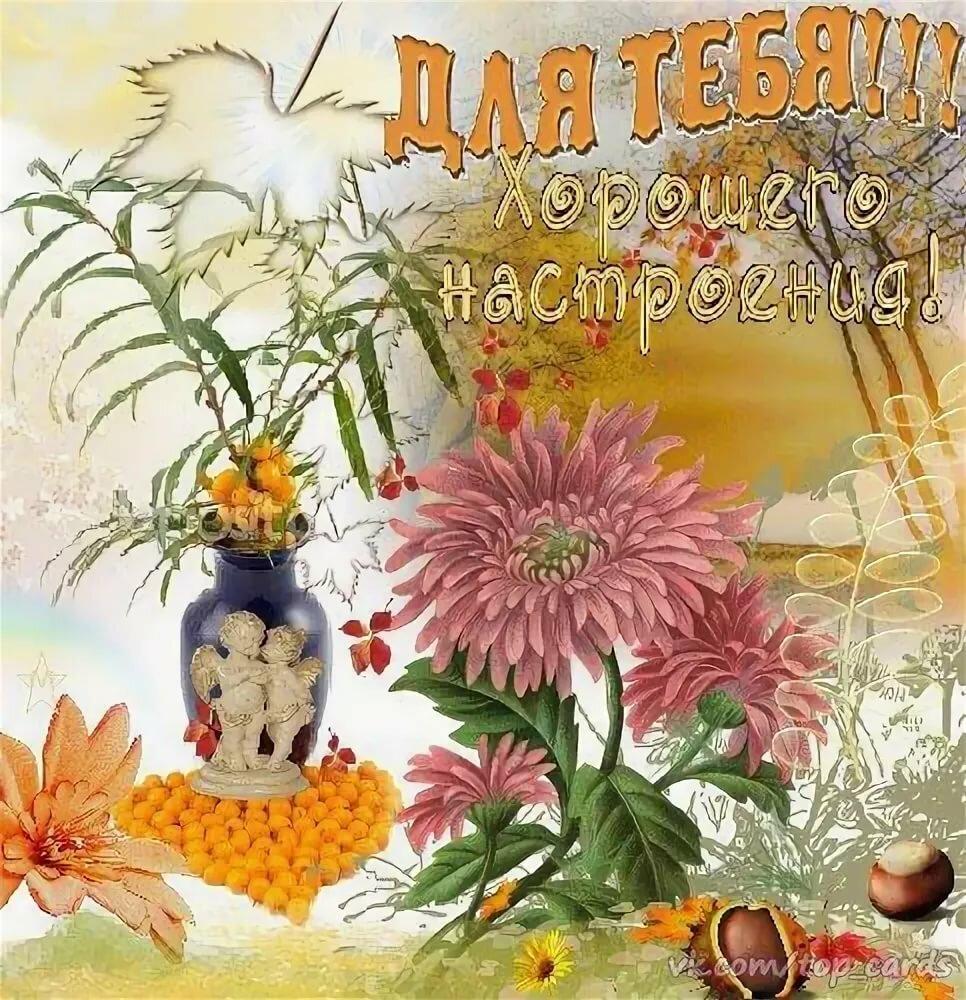 каталог открытки доброго дня и удачи на весь день осенние компьютером