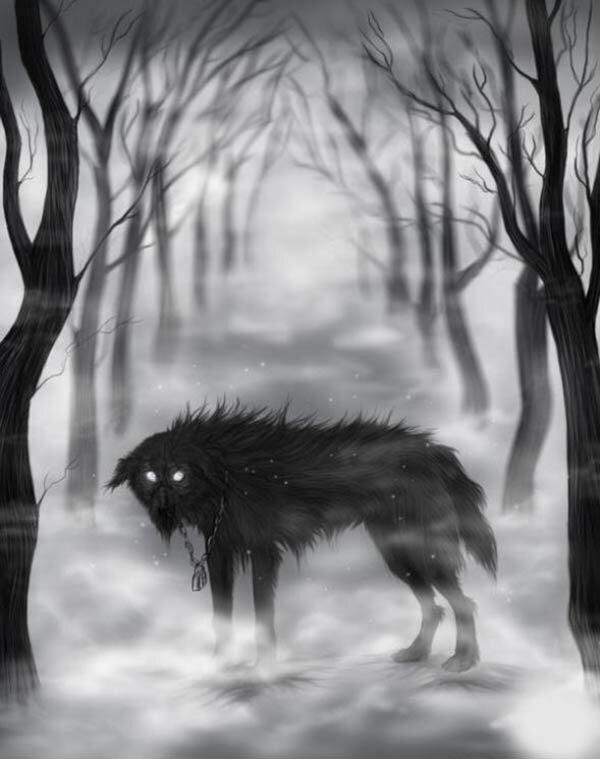 для картинки волк уходит из стаи крыльев пустоты мне