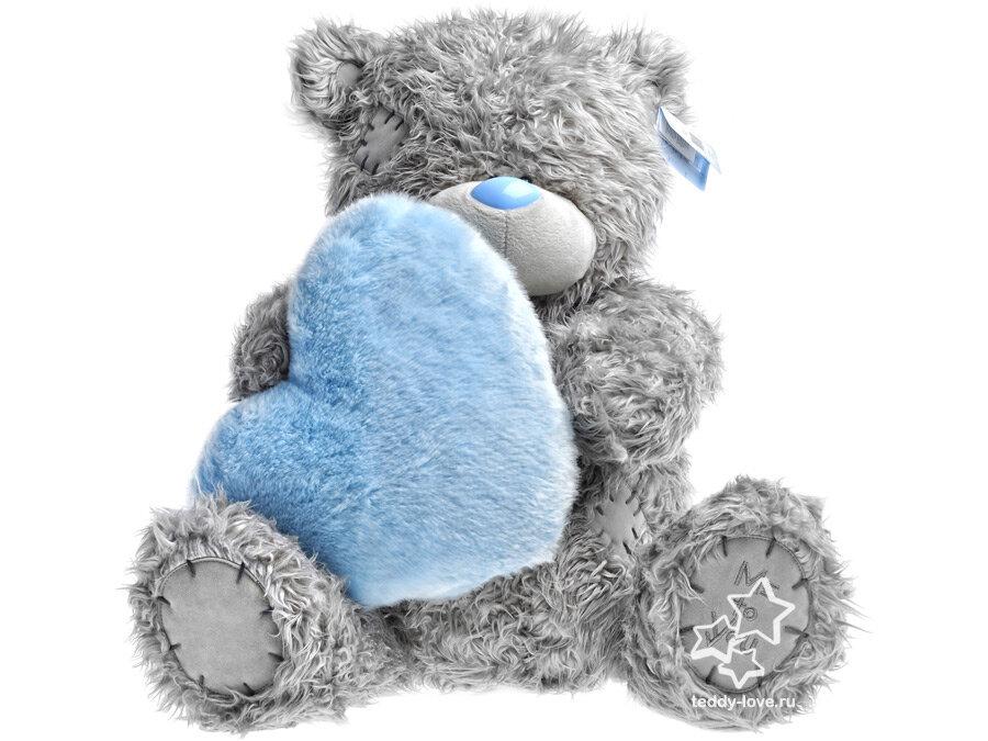 пресса картинки синего медвежонка ничьим