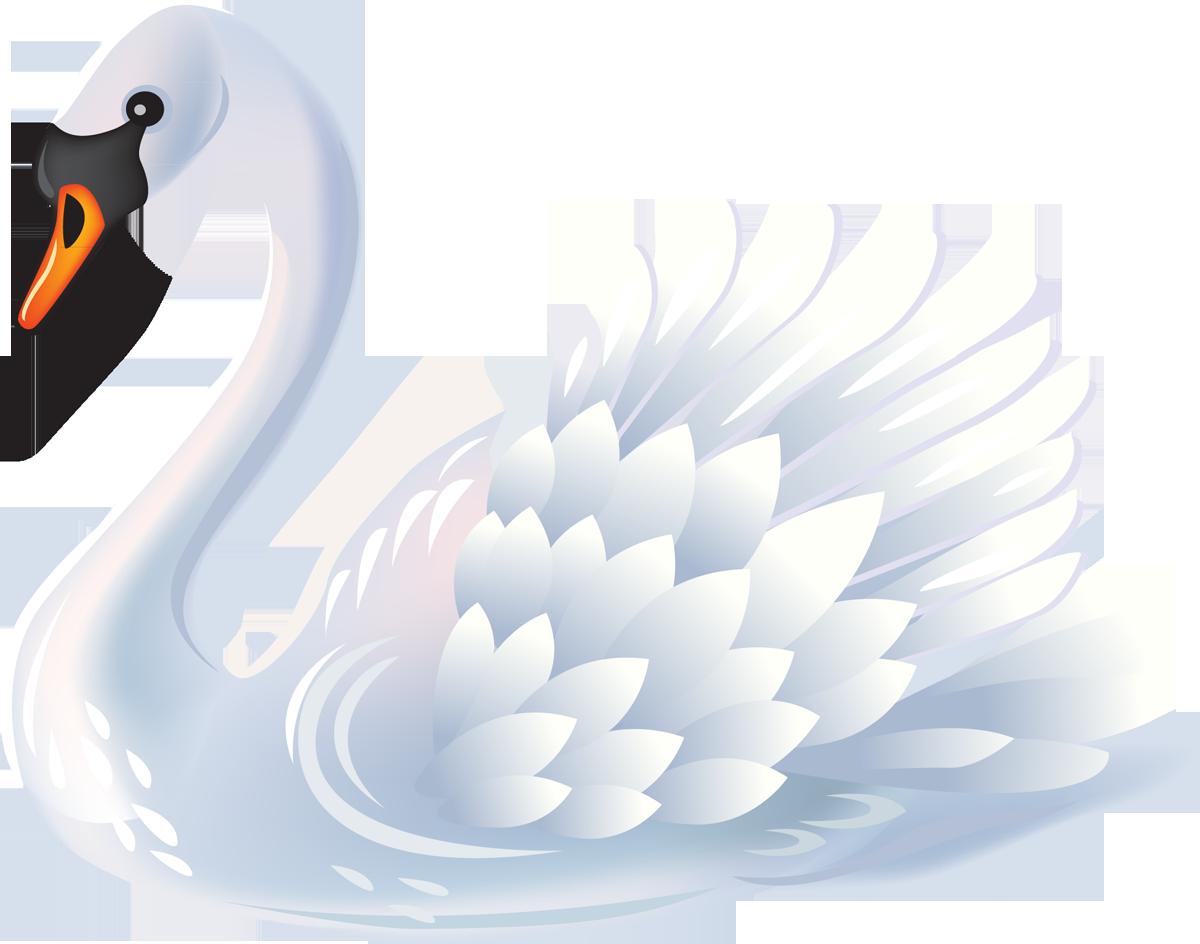 Главному, картинки для детей рисованные лебедь