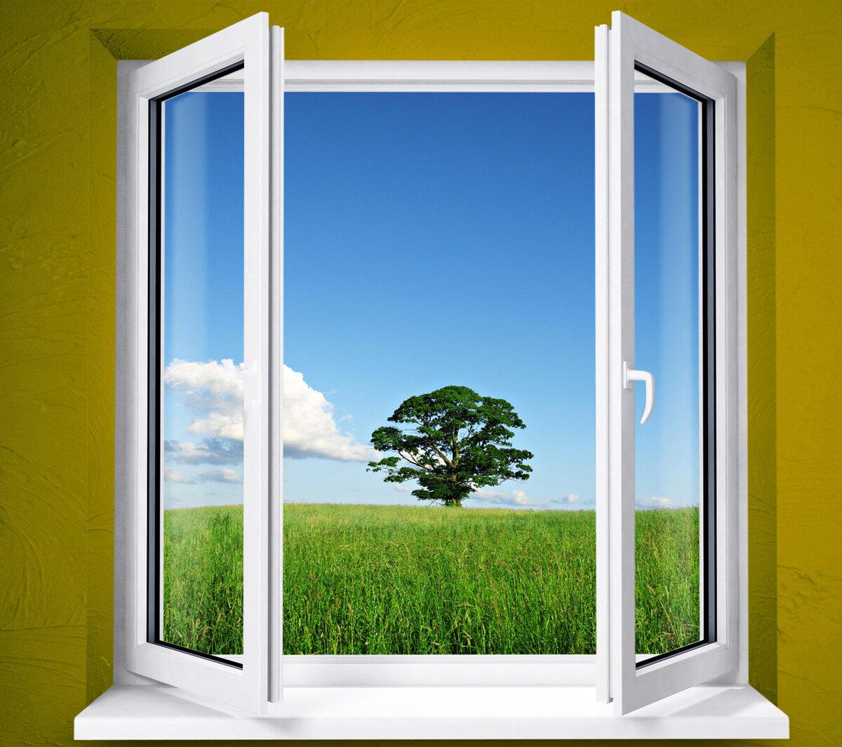 Надписью муслимат, картинки окна пвх красивые для рекламы