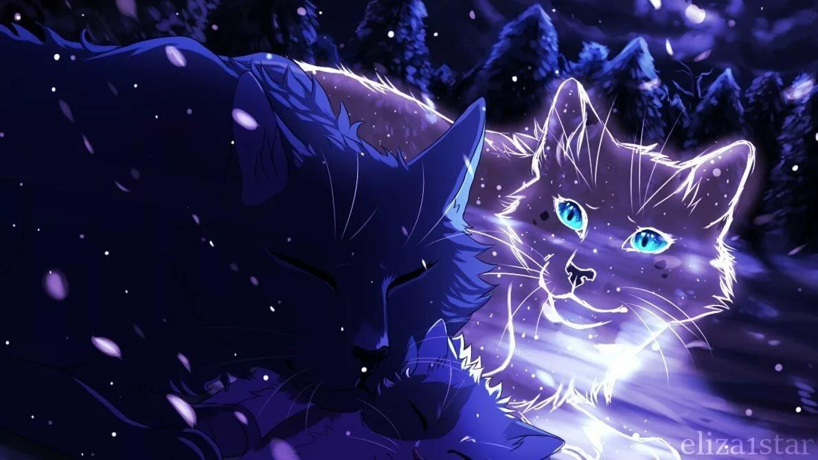 Коты воители в картинках, классных выходных онлайн