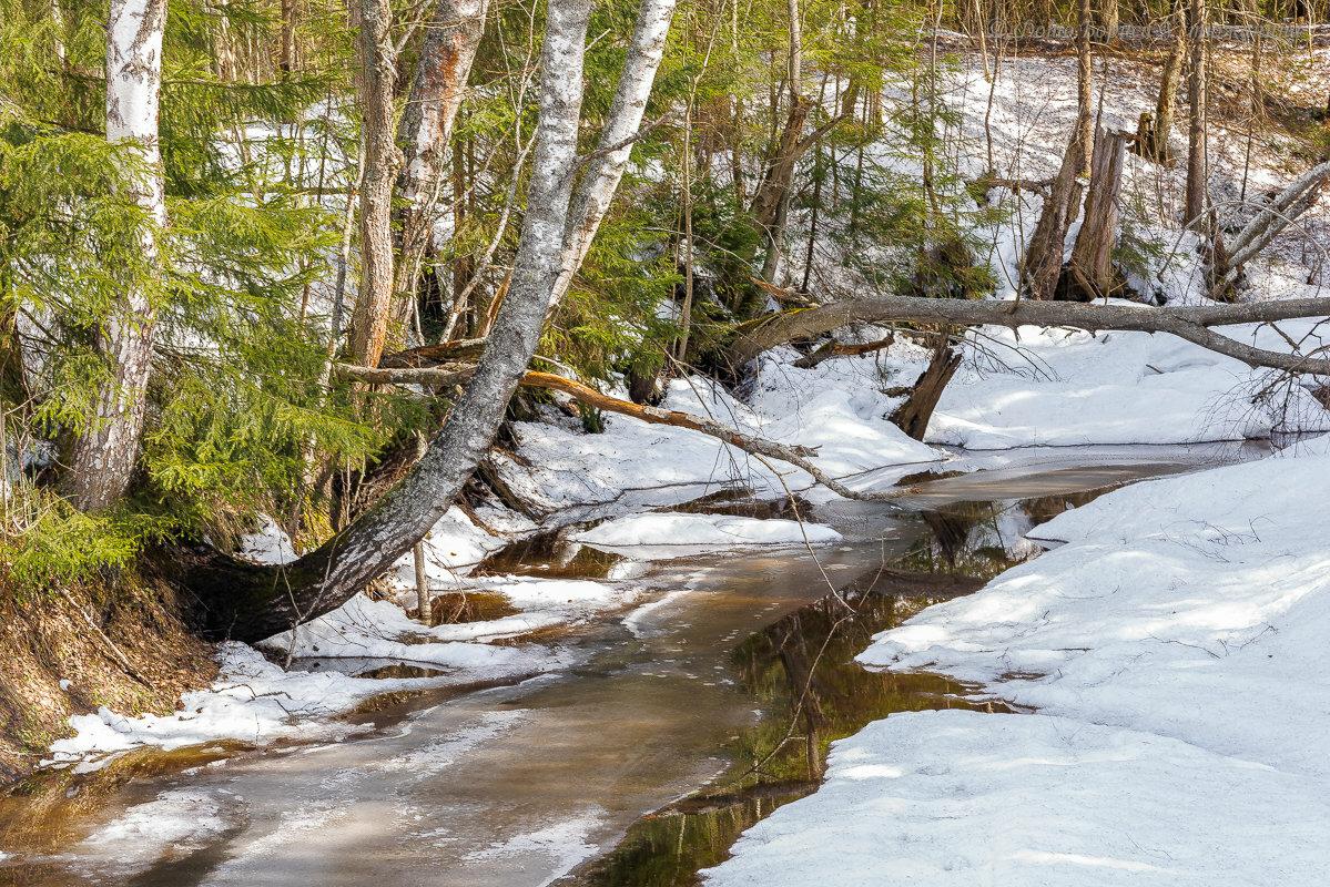 Картинки таяние снегов