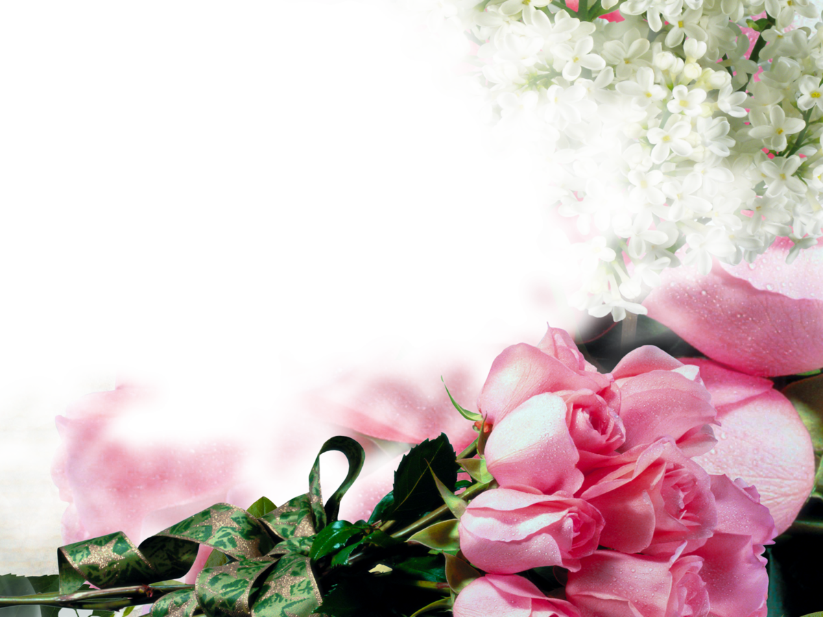 Шаблон для презентации розы