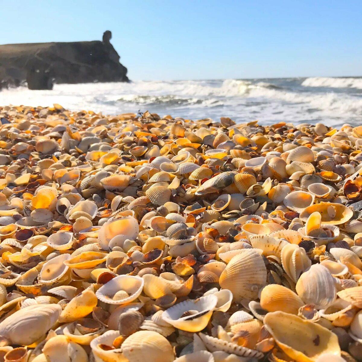 тому азовское море фотографии пляжа заранее