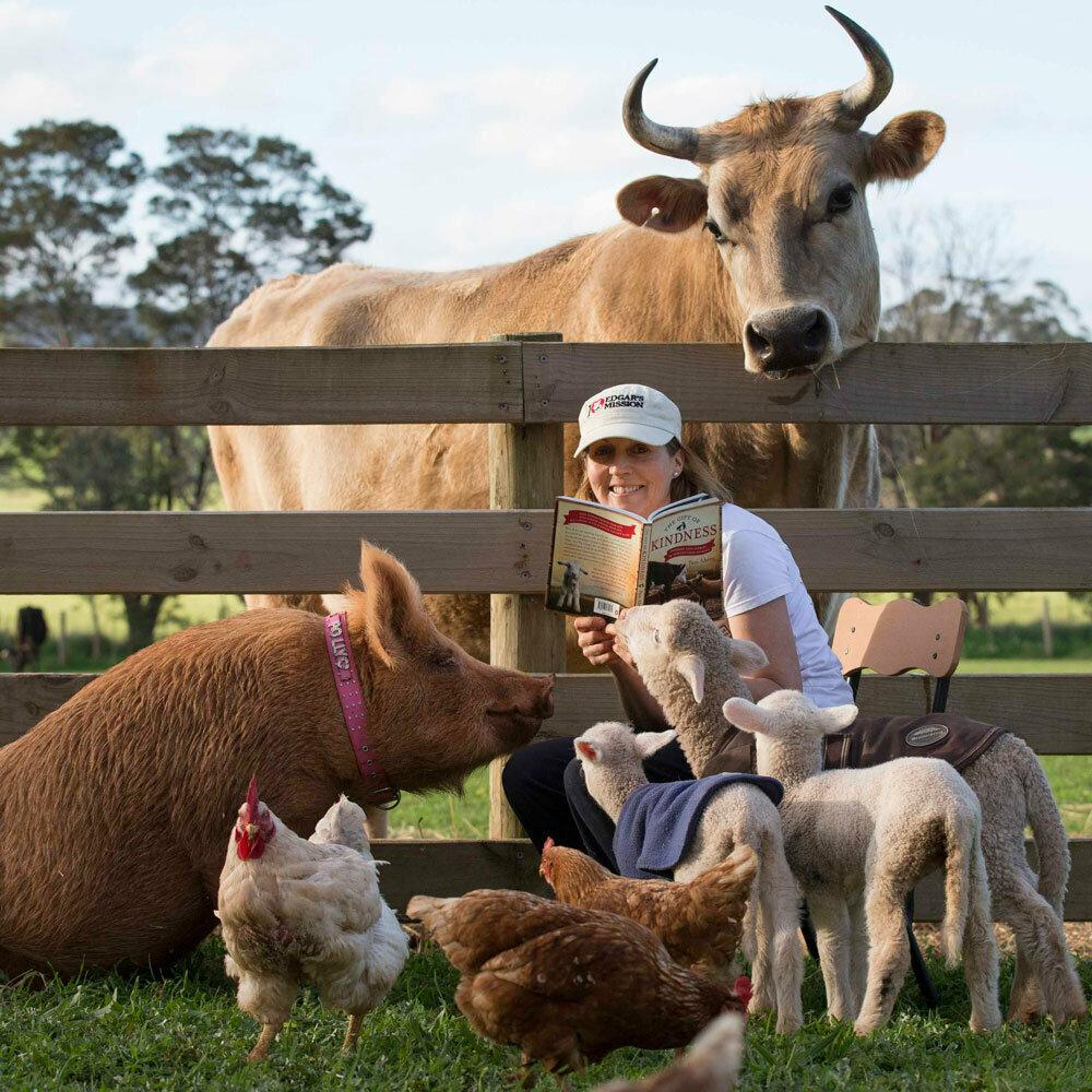 Фото домашних животных ферма